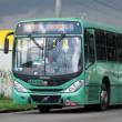 (Foto: reprodução/Facebook ônibus de Curitiba)
