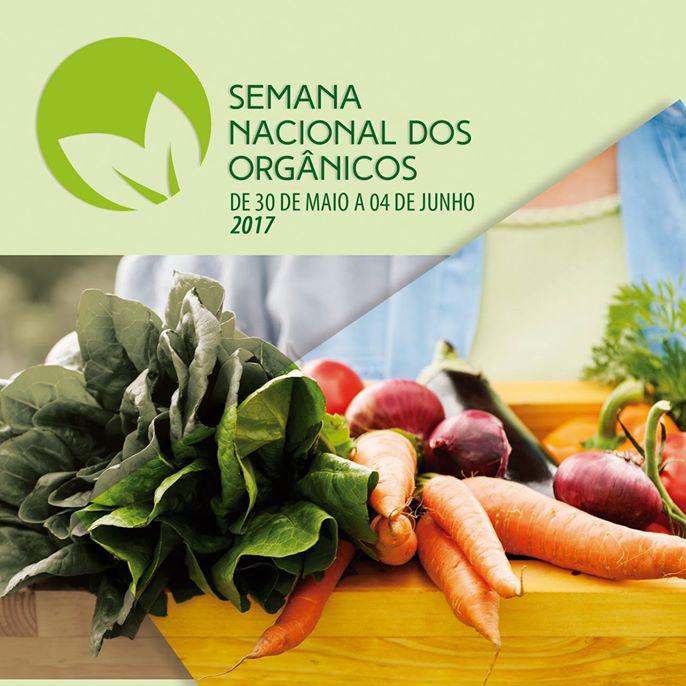 Imagem divulgação / Mercado Municipal
